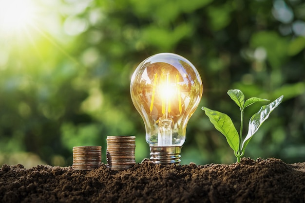 太陽の光で土の上に成長している電球とお金のスタックを植えます。コンセプト保存 Premium写真