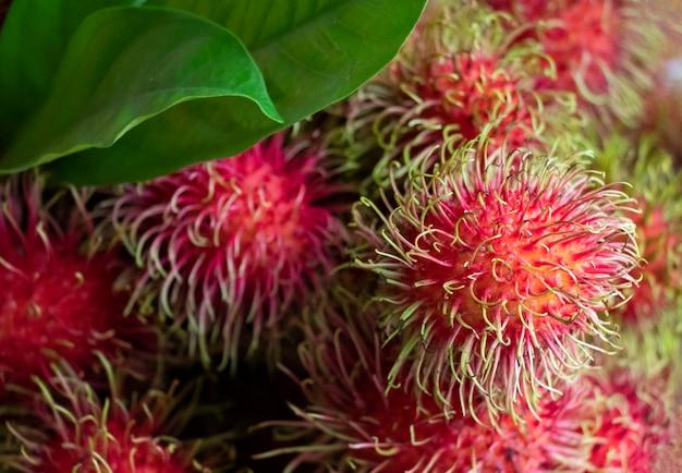 Красные рамбутаны свежие фрукты по сельскому хозяйству хорошее питание и вкус в летний сезон Premium Фотографии