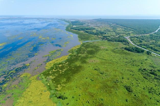 空撮ドローンショットトップダウンの緑の森と湖の美しい荒野自然風景 Premium写真
