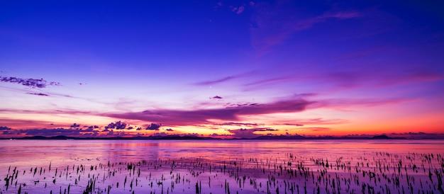 美しい光の夕日や海の風景、自然の背景の日の出 Premium写真