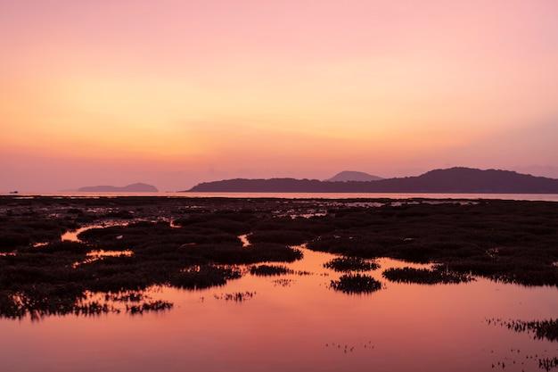 日の出風景と海の美しい反射でサンゴ礁と劇的な空の海の風景 Premium写真
