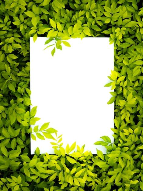 Творческий макет из цветов и листьев с записью бумажной карты Premium Фотографии