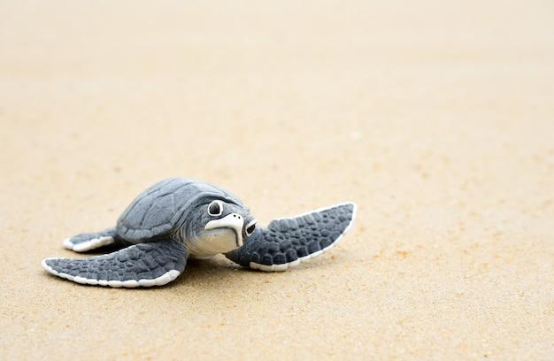 Маленькая черепаха на белом пляже Premium Фотографии