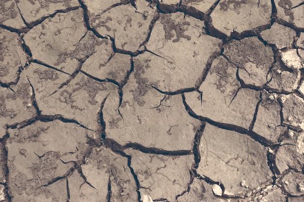 Засуха, земля трещины, нет горячей воды, недостаток влаги. сухая и потрескавшаяся земля, растрескавшаяся поверхность, сухая почва в засушливых районах. Premium Фотографии