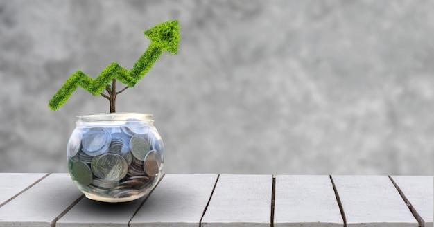 成長事業。ツリーは形に成長し、金融ビジネスの成長の概念を示しています。 Premium写真