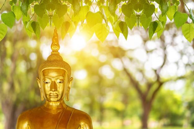 Статуя будды, день вишакха пуджи Premium Фотографии