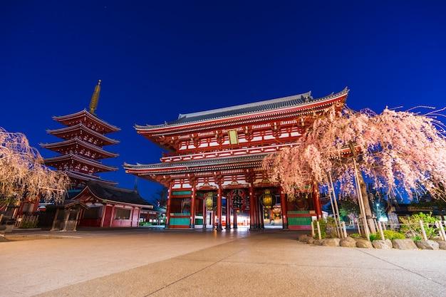 浅草寺の春の桜 Premium写真