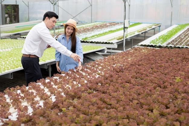 男性検査官が有機野菜の品質を検査し記録し、女性農家が指導を行います。 Premium写真
