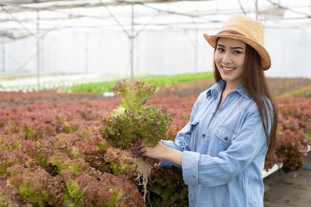 女性は有機野菜農場で赤いカシを集めています。 Premium写真