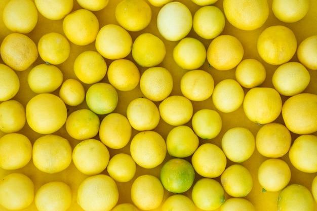 新鮮なレモンの葉 Premium写真