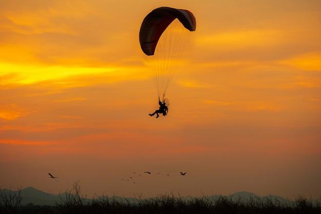 Силуэт летающих птиц и парамотор закат небо Premium Фотографии