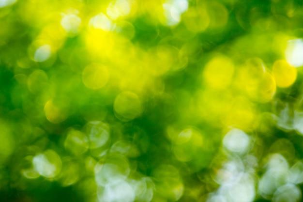 自然の緑ボケ抽象的な背景 Premium写真