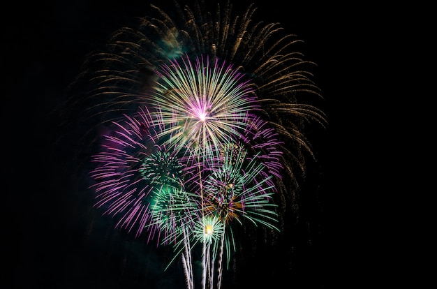 Красочный фейерверк на черном фоне неба с свободным пространством для текста Premium Фотографии