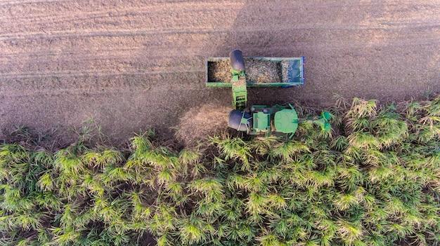 サトウキビ収穫の航空写真 Premium写真