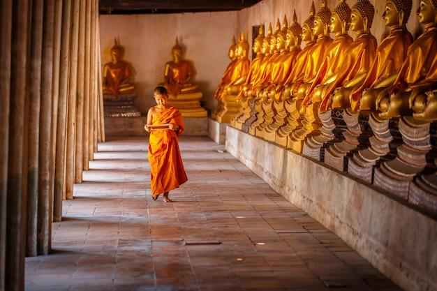 少し初心者の読書と古い寺院、アユタヤ県、タイで面白いと黒板の勉強 Premium写真
