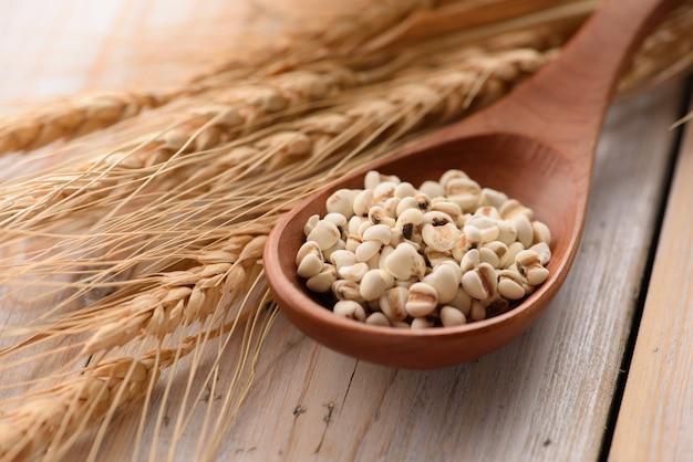 Органические семена проса в деревянной ложкой крупным планом Premium Фотографии