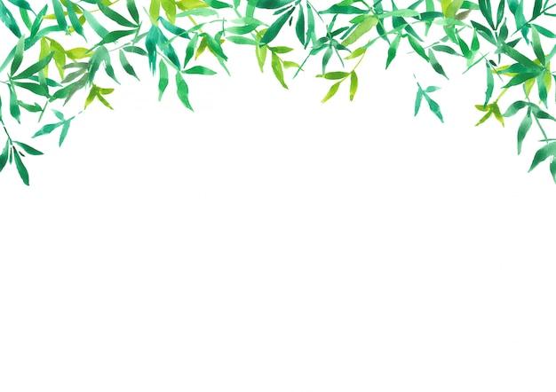 緑の竹の葉の背景、水彩イラスト Premium写真