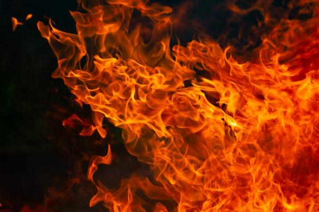 熱い炎と煙が暗闇で燃える Premium写真