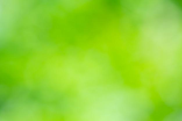 背景のボケ味自然光、緑、ぼやけて黄色 Premium写真