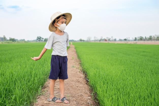 Азиатская маска для лица носки мальчика и бамбуковая шляпа стоя на ферме риса. здоровая концепция Premium Фотографии
