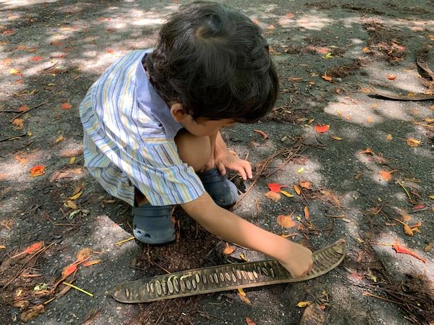 アジアの少年たちは木から落ちる種を遊んでいます Premium写真