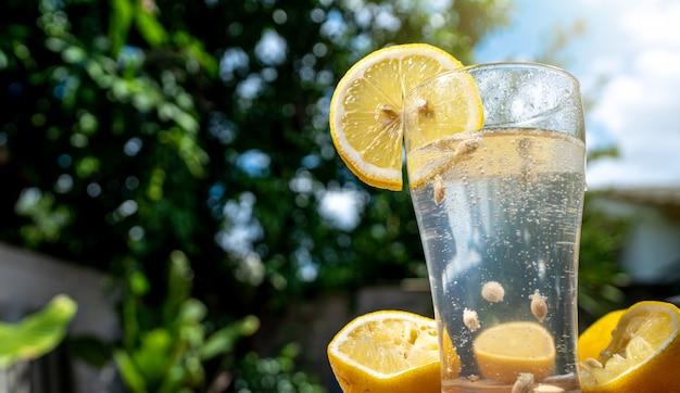 透明なガラスのソーダラモン水 Premium写真