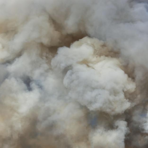燃えさしからの煙 Premium写真