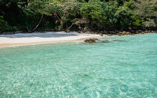 ボートビューから澄んだ海と白いビーチ Premium写真
