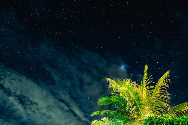 夜のココナッツと星空 Premium写真