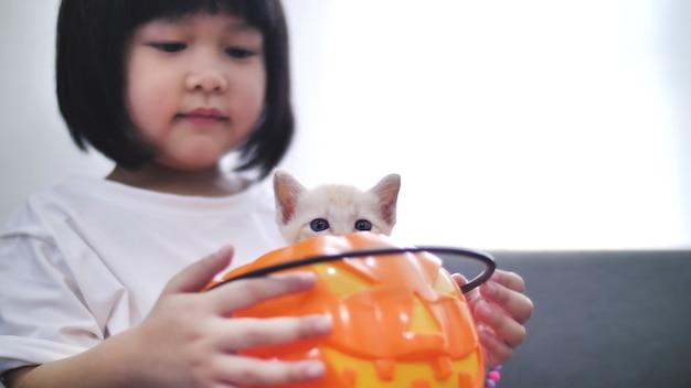 ハッピーアジアの女の子を再生隠すとカボチャのバケツの中に小さな子猫とシーク Premium写真