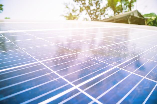 緑の木と太陽の照明の太陽農場の太陽電池 Premium写真