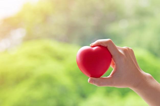 赤いハートを持つ女性の手 Premium写真