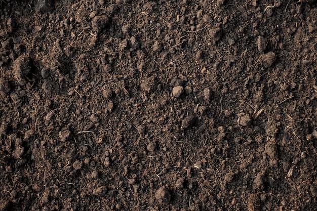 植栽、土壌テクスチャ背景に適した肥沃なローム土壌。 Premium写真