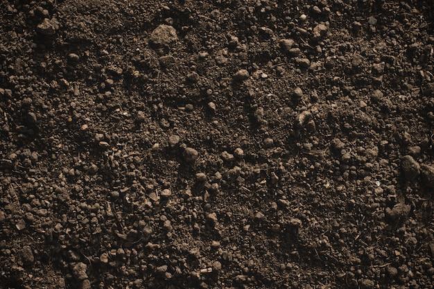 植え付けに適した肥沃なローム土壌、土壌テクスチャー。 Premium写真