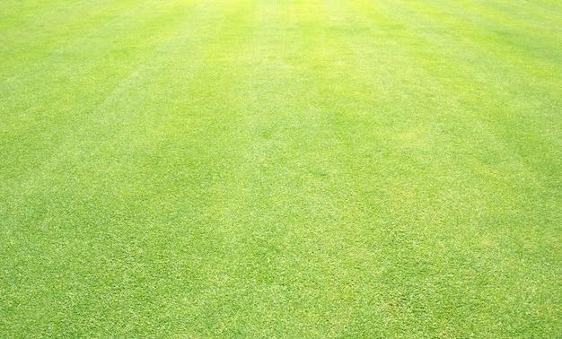 草背景ゴルフ場緑の芝生 Premium写真
