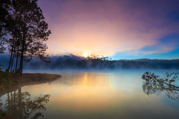 朝の湖と松の森 Premium写真