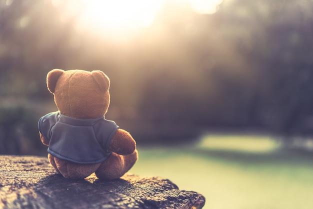 レンズフレアの芝生のフィールドに座っている素敵な茶色のテディベアを閉じます。レトロとヴィンテージのスタイル Premium写真