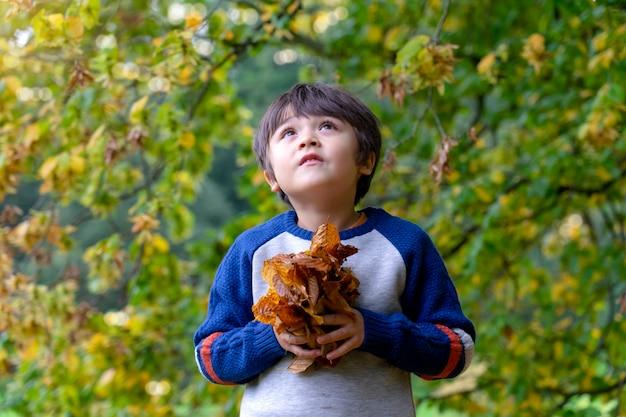 秋の葉を保持している子供の肖像画 Premium写真