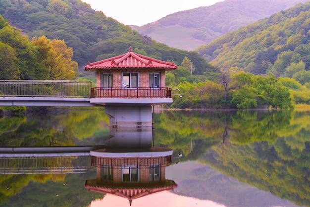 Озеро весенней зелени на озере йонгби в сеосане, южная провинция чхунчхон, корея Premium Фотографии