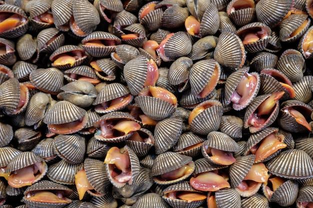 Свежие сырые морепродукты Premium Фотографии