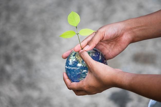 地球球と人間の手で成長しているツリー Premium写真
