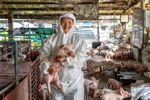 養豚場で豚を移動させるためのアジアの獣医師 Premium写真
