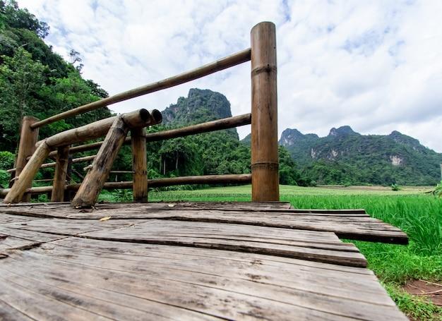 自然の風景の背景 Premium写真