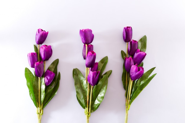 Фиолетовые тюльпаны цветы весенний фон Premium Фотографии