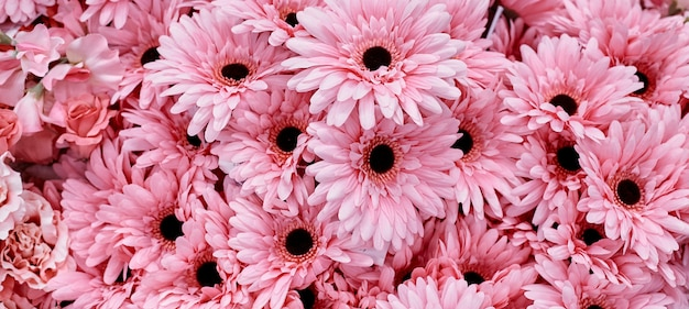 ピンクの花を背景に使用 Premium写真