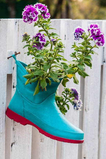 Цветы в сапогах Premium Фотографии
