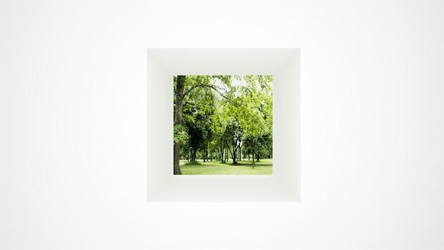 Белая стена с окном газон и лес Premium Фотографии