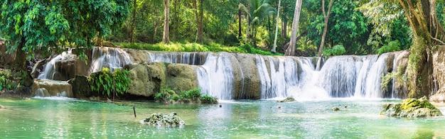 熱帯林の山の森の滝 Premium写真