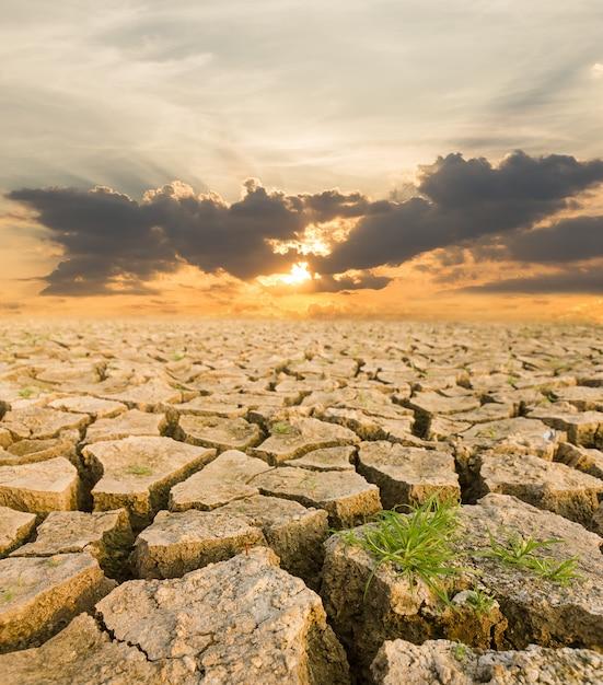 夕日の下で干ばつの土地 Premium写真