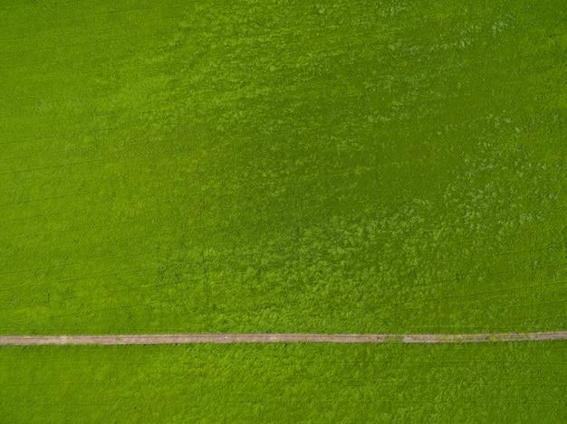 緑の風景と田んぼの飛行ドローンから空撮 Premium写真